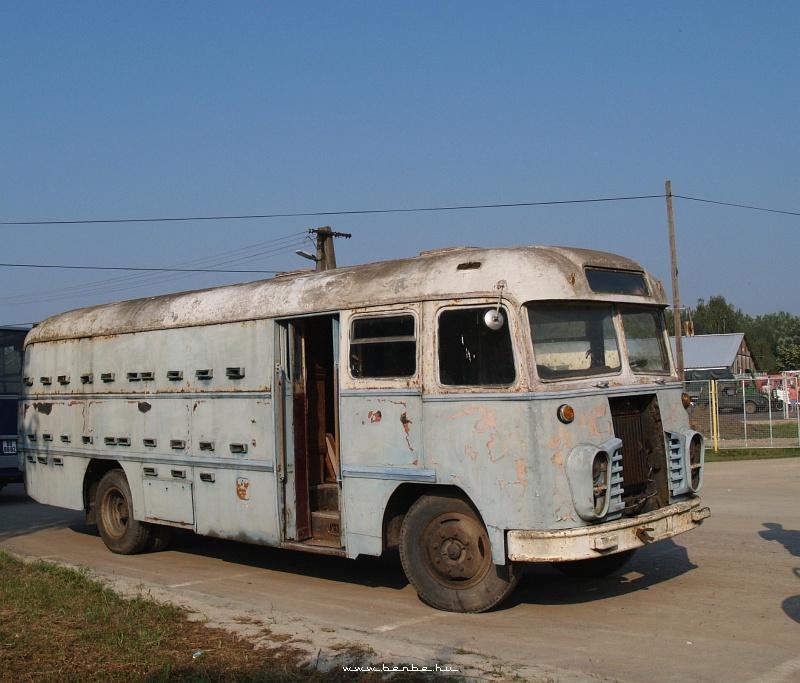 Kaptárbusz (Milla Jovovichbusz nélkül) fotó
