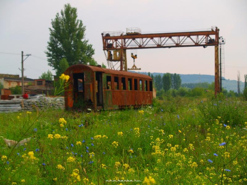 Beregszász  BK  állomás fotó