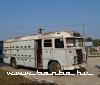 Kaptárbusz (Milla Jovovichbusz nélkül)