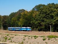 Az UZ TU2 098 Ifjúság és Ungvár-Vadaskert (Park) között az Ungvári Gyermekvasúton