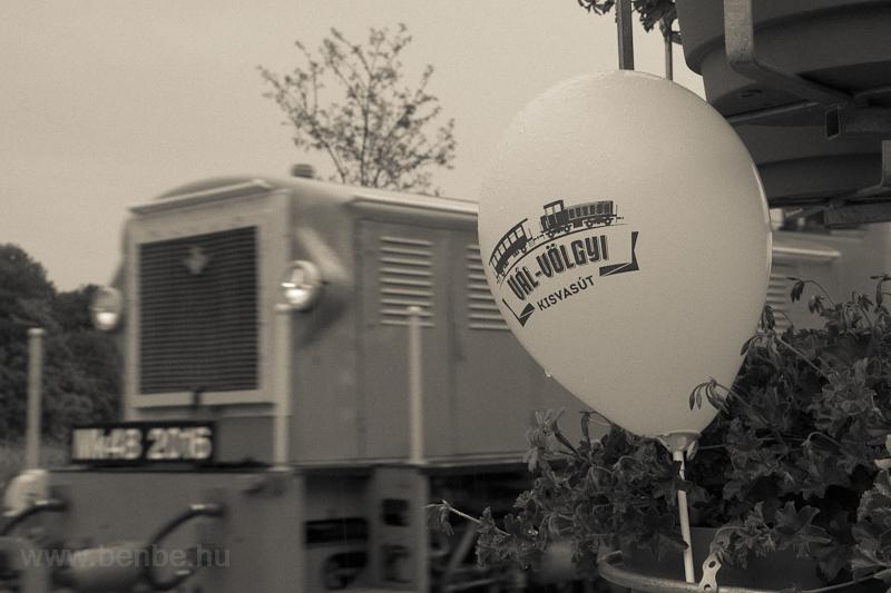 A Vál-völgyi Kisvasút Mk48 2012 Felcsút állomáson fotó