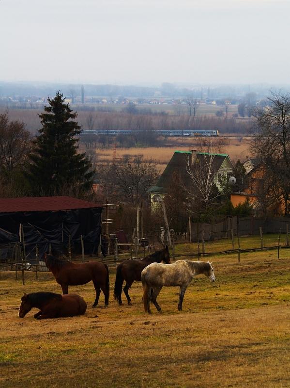 Ismeretlen BDVmot Váchartyán és Rudnaykert között, lovakkal fotó
