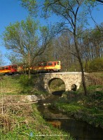 A Bzmot on the little viaduct