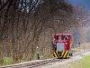 A Felsőtárkányi Erdei Vasút C-04 404 Stimecz-ház kitérő állomáson