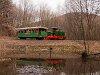 A Nagybörzsönyi Erdei Vasút C50 3756 Vetettfű és Füstös forrás között