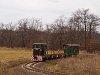 A Nagybörzsönyi Erdei Vasút C50 3737 Füstös forrás és Márianosztra között