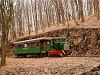 A Nagybörzsönyi Erdei Vasút C50 3756 Márianosztra és Füstös forrás között