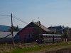 A Királyréti Erdei Vasút M 06 401 Szokolya-Riezner és Paphegy között