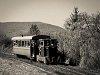 A Nagybörzsönyi Erdei Vasút C50 3739 Szokolya-Mányoki és Hártókút között