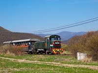 The Királyréti Erdei Vasút Mk48 2014 seen between Paphegy and Szokolya-Riezner
