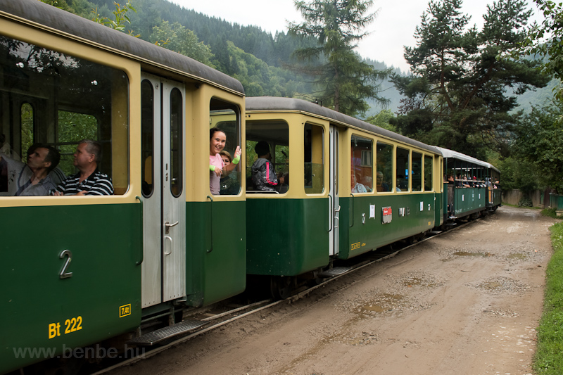 Wengernalpbahn cars at Vise photo
