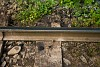 Ózdi sín a Felsővisói Erdei Vasúton