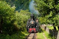 A CFF Viseu 764 435 <q>Bavaria</q> Valea Scradei és Novat között