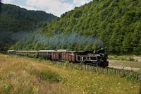 A CFF Viseu 764 449  Cozia-2  Valea Scradei és Novat között, dubával, régi kocsival, Wengernalpbahn-kocsikkal és nyitott kocsikkal