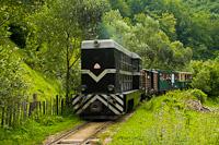 A CFF Viseu L35H 024 Valea Scradei és Novat között