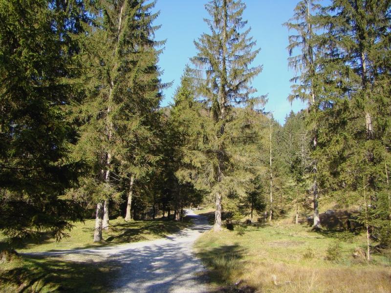 Griessenbach-klamm fot�