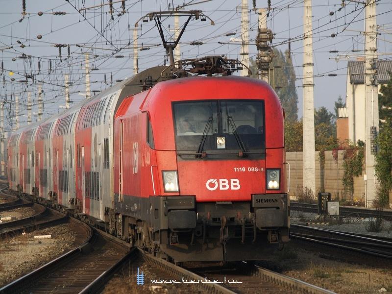 1116 088-4 Bécsújhely (Wiener Neustadt) állomáson fotó