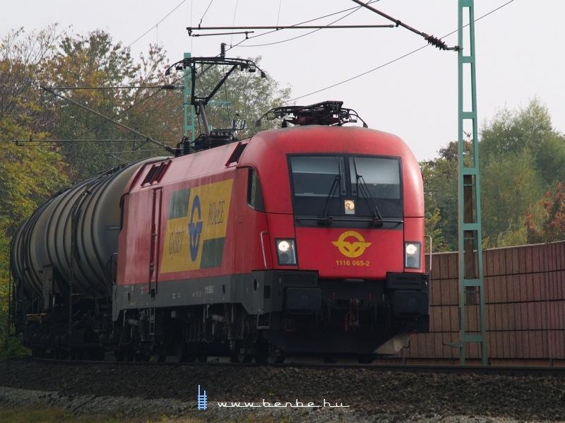 1116 065-2 Lajtaújfalu (Neufeld a/d Leitha) állomás elõtt fotó