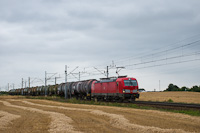 The DB 193 367 <q>Vectron</q> seen between Chrosnica and Zbaszyn