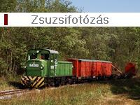 Photographing Zsuzsi