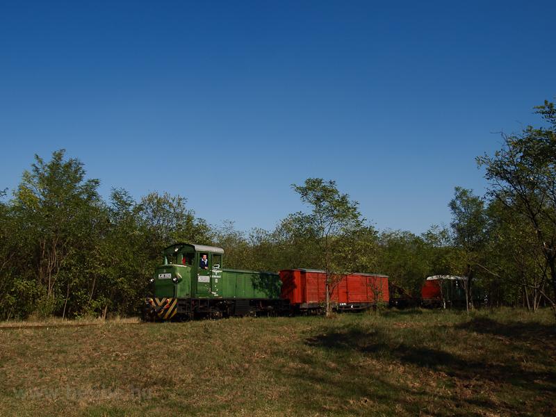 Az Mk48,2002 vegyesvonattal Haláperdő és Sámsoni út között fotó