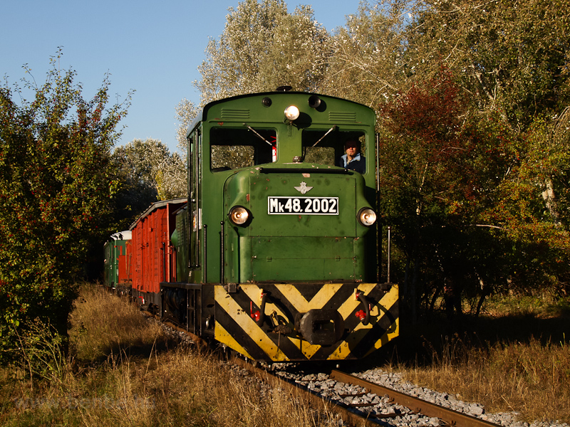 Mk48,2002 Erdészlak és Csereerdő között fotó